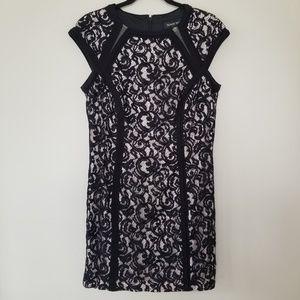 {14} Tadashi Shoji Black Lace Overlay Dress